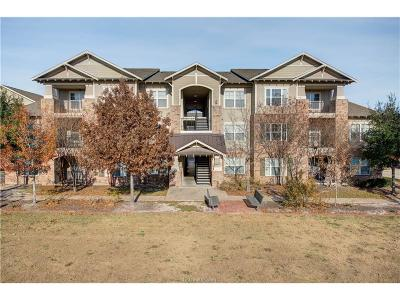 College Station Condo/Townhouse For Sale: 1725 Harvey Mitchell #2223