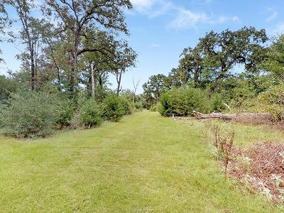 College Station, Bryan, Iola, Caldwell, Navasota, Franklin, Madisonville, North Zulch, Hearne Residential Lots & Land For Sale: 7511 Deep Well Road