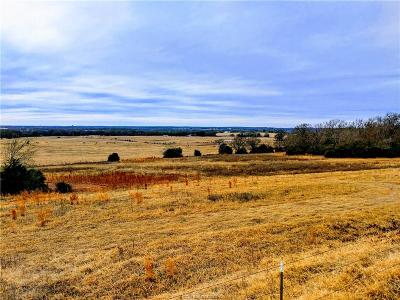 College Station, Bryan, Iola, Caldwell, Navasota, Franklin, Madisonville, North Zulch, Hearne Residential Lots & Land For Sale: 2836 Pin Oak Road