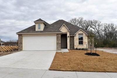Bryan TX Single Family Home For Sale: $223,600