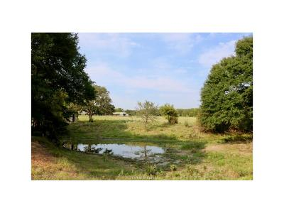 Robertson County Single Family Home For Sale: 1895 Schubrych Antis Road
