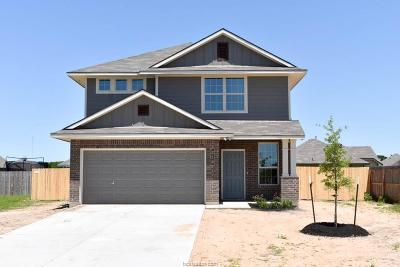 Grimes County Single Family Home For Sale: 214 Wild Flower Court