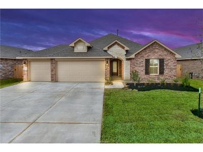 Grimes County Single Family Home For Sale: 2026 Eagle View Drive