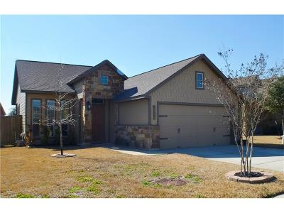 Brazos County Single Family Home For Sale: 3809 Clear Meadow Creek Avenue