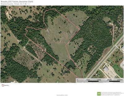 bryan Residential Lots & Land For Sale: 7373 East Sh-21