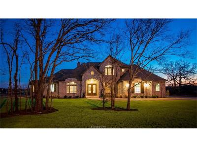 College Station Single Family Home For Sale: 18054 Wigeon