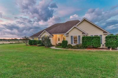 Single Family Home For Sale: 34164 Howell Road