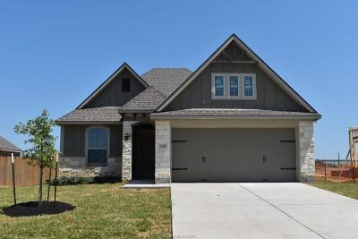 Grimes County Single Family Home For Sale: 7410 Masters Drive