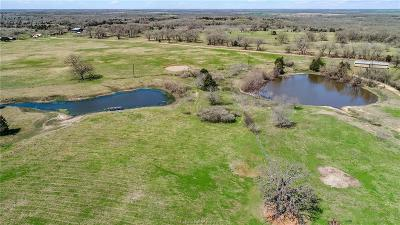 Milam County Single Family Home For Sale: 1552 Cr 267 County Road