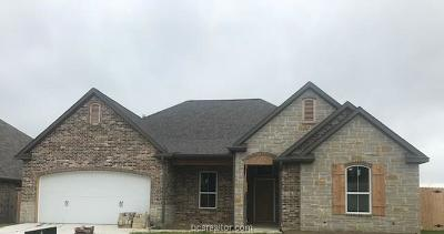 College Station Single Family Home For Sale: 15606 Long Creek Lane
