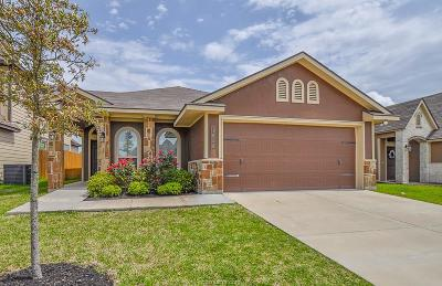 Bryan Single Family Home For Sale: 1058 Venice Drive