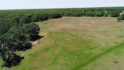 College Station Residential Lots & Land For Sale: 00 Schehin Road