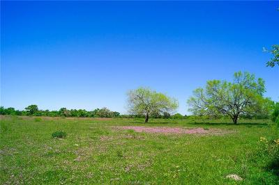 College Station, Bryan, Iola, Caldwell, Navasota, Franklin, Madisonville, North Zulch, Hearne Residential Lots & Land For Sale: Tbd N Old Springfield Rd