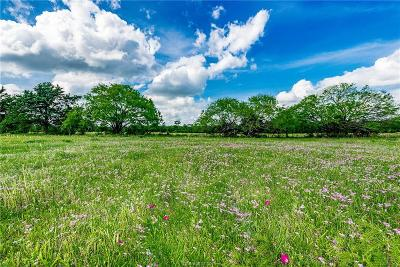 College Station, Bryan, Iola, Caldwell, Navasota, Franklin, Madisonville, North Zulch, Hearne Residential Lots & Land For Sale: 4 N Old Springfield Rd