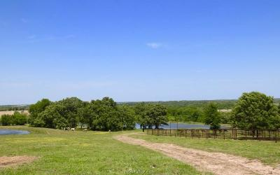 Navasota Residential Lots & Land For Sale: Tbd 83.988 Ac Cr 446