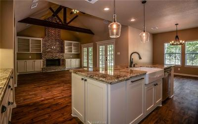 College Station Single Family Home For Sale: 9669 Woodview Drive