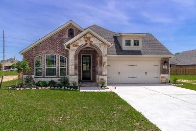 Briar Meadows Creek Single Family Home For Sale: 3053 Peterson