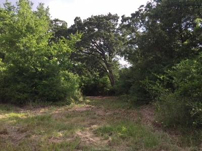 College Station Residential Lots & Land For Sale: 11095 Lakefront Drive