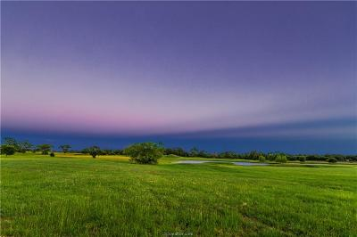College Station Residential Lots & Land For Sale: 19381 Moonlit Hollow Loop