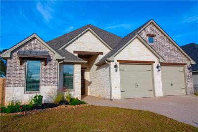 College Station Single Family Home For Sale: 3911 Eskew Drive