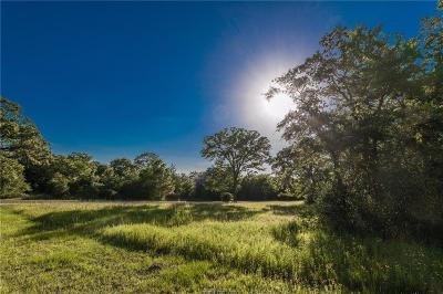 College Station Residential Lots & Land For Sale: 3902 Millican Creek Trail