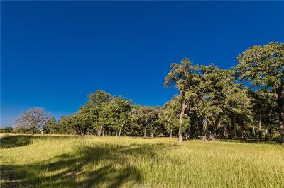 Brazos County Residential Lots & Land For Sale: 3869 Millican Creek Trail