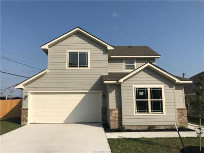 Bryan Single Family Home For Sale: 801 Union