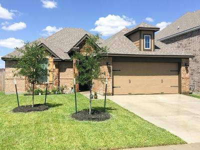 College Station Single Family Home For Sale: 15323 Still Water Meadow Lane