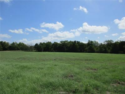 College Station, Bryan, Iola, Caldwell, Navasota, Franklin, Madisonville, North Zulch, Hearne Residential Lots & Land For Sale: E Boone Prairie Road