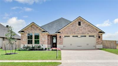 College Station Single Family Home For Sale: 15656 Long Creek Lane