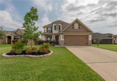 Bryan Single Family Home For Sale: 1021 Venice Drive