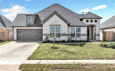 Creek Meadows Single Family Home For Sale: 4006 High Creek Court