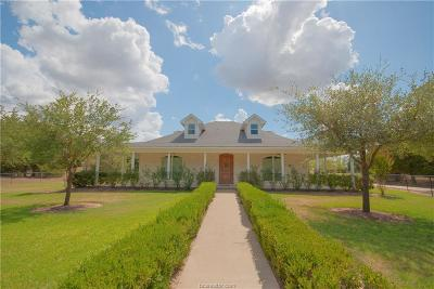 Bryan Single Family Home For Sale: 6659 Castenson Road