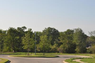 Brazos County Residential Lots & Land For Sale: 3850 Sagebriar Drive