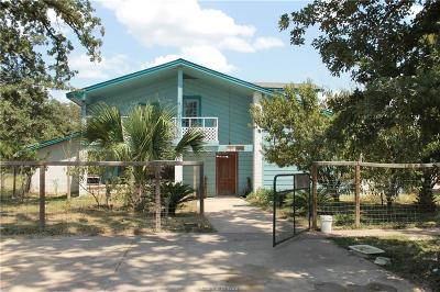 Bryan Single Family Home For Sale: 9004 Wannabe Road
