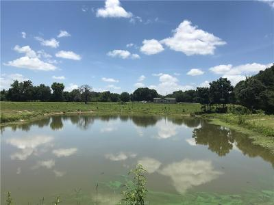 Franklin Single Family Home For Sale: (+/- 31.91 Ac) 1550 Fm 46