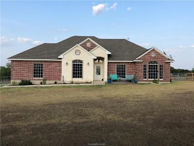 Bryan Single Family Home For Sale: 4880 North Country Drive