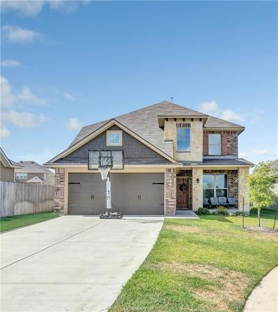 Bryan Single Family Home For Sale: 3040 Positano Loop