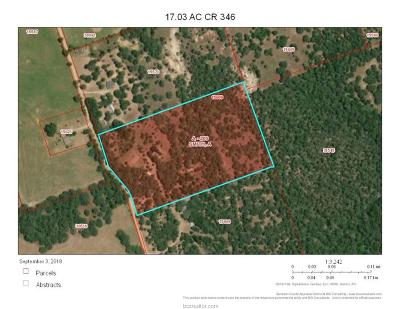 Burleson County Single Family Home For Sale: 9132 County Road 346