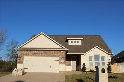 Bryan Single Family Home For Sale: 3054 Peterson Circle