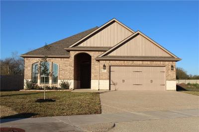 Bryan Single Family Home For Sale: 3062 Peterson Circle