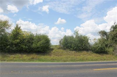 College Station, Bryan, Iola, Caldwell, Navasota, Franklin, Madisonville, North Zulch, Hearne Residential Lots & Land For Sale: 0000 Fm 39 County Road