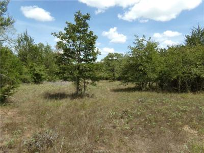 College Station, Bryan, Iola, Caldwell, Navasota, Franklin, Madisonville, North Zulch, Hearne Residential Lots & Land For Sale: 9999 Old Boone Prairie Road