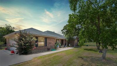 Brazos County Single Family Home For Sale: 16162 Wilson Pasture