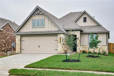 Creek Meadows Single Family Home For Sale: 3880 Still Creek Loop