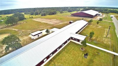 Brazos County Single Family Home For Sale: 4045 Golden Eagle