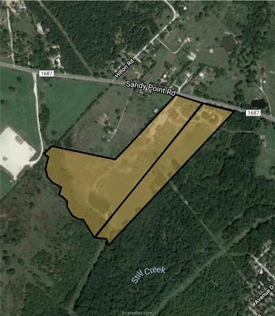 Brazos County Residential Lots & Land For Sale: 3019 Sandy Point Road
