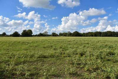 Caldwell Residential Lots & Land For Sale: (+/-11.3) County Road 126