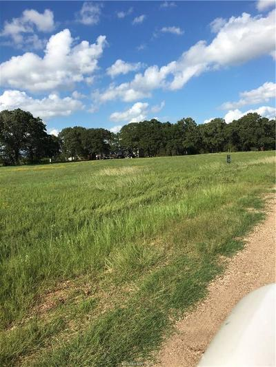 Brazos County Residential Lots & Land For Sale: Tbt Sand Creek