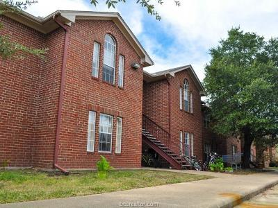 College Station Rental For Rent: 701 Balcones Drive #D
